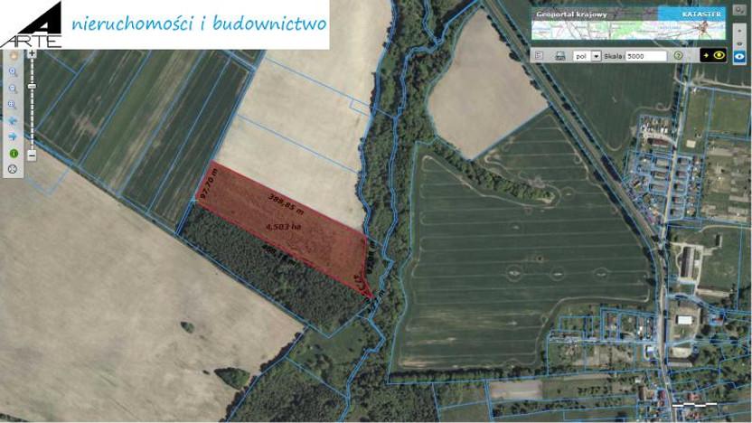 Działka na sprzedaż, Grzybnica, 45300 m²   Morizon.pl   6826