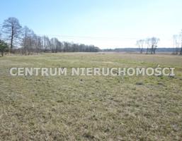 Morizon WP ogłoszenia | Działka na sprzedaż, Prądocin, 25000 m² | 0499