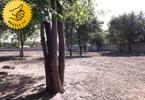 Morizon WP ogłoszenia | Działka na sprzedaż, Błonie, 3359 m² | 9341