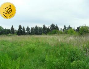 Działka na sprzedaż, Bronisze, 5000 m²