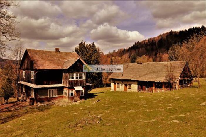 Działka na sprzedaż, Pewel Wielka, 30000 m² | Morizon.pl | 5879