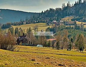 Działka na sprzedaż, Soblówka, 9073 m²