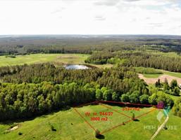 Morizon WP ogłoszenia | Działka na sprzedaż, Wołowno, 3000 m² | 9196