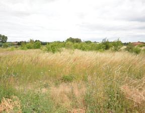 Działka na sprzedaż, Wąwelnica, 3165 m²