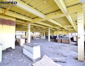 Magazyn, hala na sprzedaż, Bielsko-Biała Dolne Przedmieście, 2922 m²