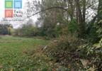 Działka na sprzedaż, Borkowice Śmiechów, 38918 m² | Morizon.pl | 4099 nr2