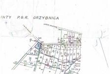 Działka na sprzedaż, Grzybnica Grzybnica, 2700 m²