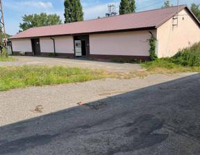 Magazyn, hala na sprzedaż, Mysłowice Ćmok, 1469 m²