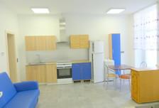 Mieszkanie do wynajęcia, Leszczyński (pow.), 45 m²