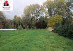 Działka na sprzedaż, Kobylany, 5600 m²   Morizon.pl   3343 nr2