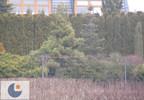 Dom na sprzedaż, Mogilany Parkowe Wzgórze, 180 m² | Morizon.pl | 0085 nr4
