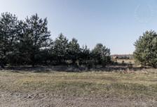 Działka na sprzedaż, Rakownia Pliszki, 3509 m²