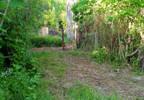 Działka na sprzedaż, Samsonowice, 6900 m² | Morizon.pl | 7114 nr11