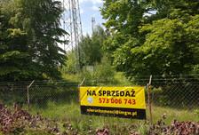 Działka na sprzedaż, Borowa Góra Lipowa, 3000 m²
