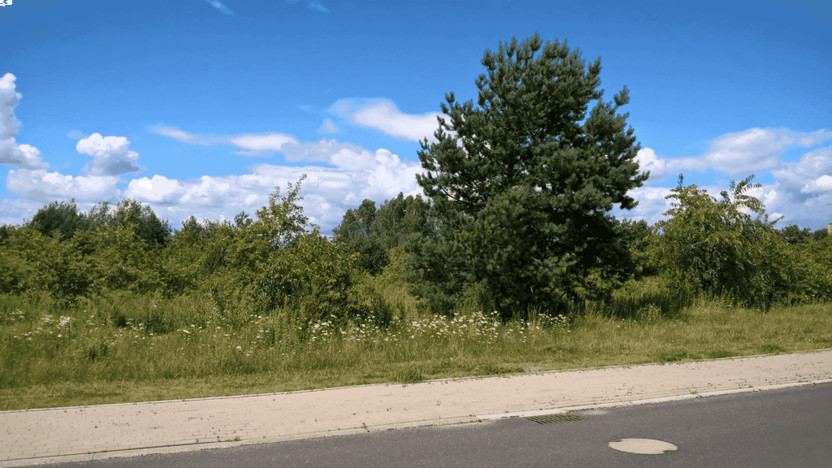 Grunt na sprzedaż, Jaworzno Dąbrowa Narodowa, 6568 m² | Morizon.pl | 0276