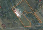 Magazyn, hala na sprzedaż, Wólka Okopska, 2127 m² | Morizon.pl | 8037 nr5