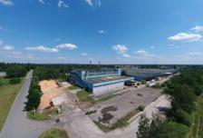 Magazyn, hala na sprzedaż, Tułowice, 5600 m²