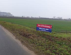 Grunt na sprzedaż, Września, 31000 m²