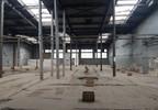 Magazyn, hala do wynajęcia, Świdnica, 3000 m² | Morizon.pl | 3216 nr2