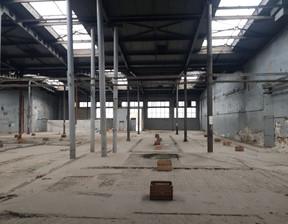 Magazyn, hala do wynajęcia, Świdnica, 3000 m²