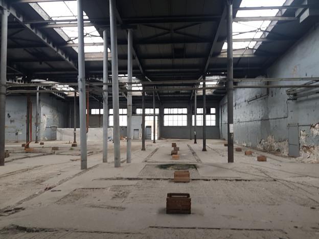 Magazyn, hala do wynajęcia, Świdnica, 3000 m² | Morizon.pl | 3216