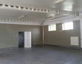 Magazyn, hala do wynajęcia, Mosina, 300 m²