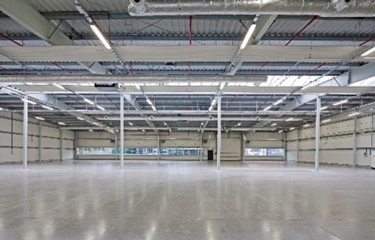 Magazyn, hala w inwestycji Hala Skarbimierz, Skarbimierz, 14520 m² | Morizon.pl | 8493