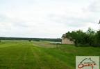 Działka na sprzedaż, Winowno, 10654 m² | Morizon.pl | 6283 nr5