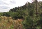 Działka na sprzedaż, Kuczbork-Osada, 46400 m²   Morizon.pl   1350 nr8
