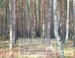 Morizon WP ogłoszenia | Działka na sprzedaż, Michałów-Reginów, 5357 m² | 6611