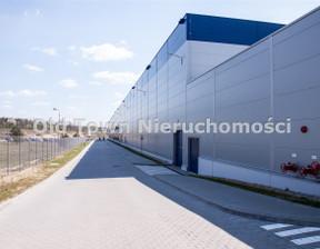 Magazyn, hala do wynajęcia, Lublin, 3600 m²