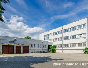 Komercyjne na sprzedaż, Gostyń, 1809 m²