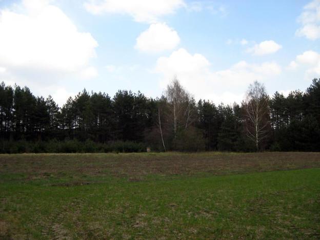 Działka na sprzedaż, Zelgoszcz, 20303 m² | Morizon.pl | 2848