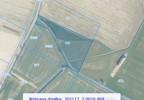 Działka na sprzedaż, Tarnowo Podgórne Szumin, 5765 m² | Morizon.pl | 4766 nr3