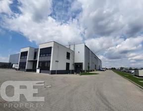 Biuro do wynajęcia, Wysogotowo Bukowska, 160 m²