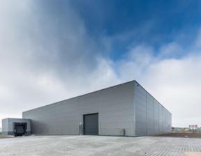 Magazyn, hala do wynajęcia, Niepruszewo, 970 m²