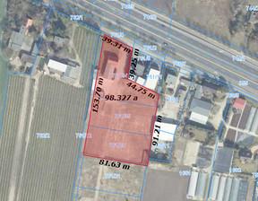 Działka na sprzedaż, Tarnowo Podgórne Poznańska, 9800 m²