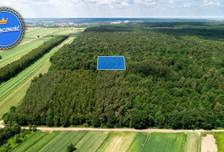 Działka na sprzedaż, Niemce, 1500 m²