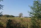 Działka na sprzedaż, Sowia Wola, 3200 m²   Morizon.pl   0885 nr20