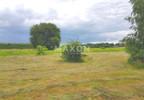 Działka na sprzedaż, Czarnów, 10500 m²   Morizon.pl   4990 nr5