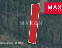 Morizon WP ogłoszenia | Działka na sprzedaż, Rajszew, 30229 m² | 8963