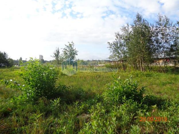 Morizon WP ogłoszenia | Działka na sprzedaż, Mikówiec, 2300 m² | 2463