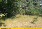 Działka na sprzedaż, Tymianka, 6900 m² | Morizon.pl | 6011 nr4