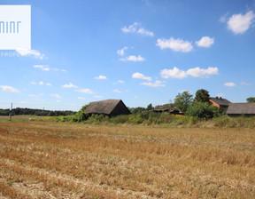 Działka na sprzedaż, Nagoszyn, 33600 m²