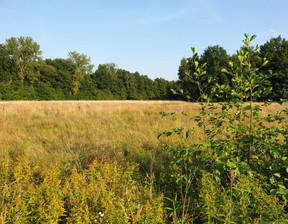 Działka na sprzedaż, Adamów-Parcel Białej Brzozy, 1200 m²