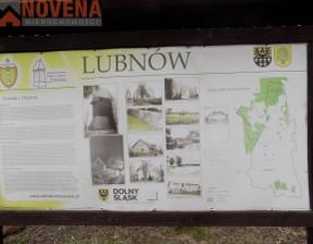 Działka na sprzedaż, Lubnów, 10500 m²