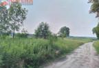 Działka na sprzedaż, Krzeczyn, 2500 m² | Morizon.pl | 0046 nr12