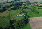 Działka na sprzedaż, Tomaryny, 8043 m²   Morizon.pl   8388 nr12