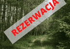 Działka na sprzedaż, Kamieńczyk Cyraneczki, 1000 m²   Morizon.pl   4803 nr2