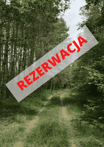 Działka na sprzedaż, Kamieńczyk Cyraneczki, 1000 m²   Morizon.pl   4803